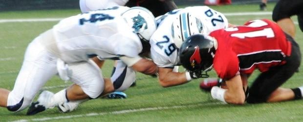 Canfield Cardinals Louisville Leopards Football 2012
