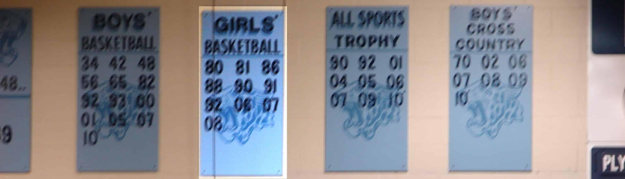 Louisville Lady Leopards Basketball 2007-08