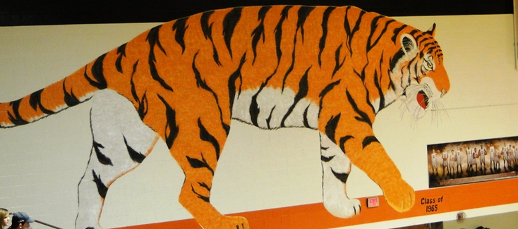 Massillon Tigers Gym Gymnasium Wall Painting