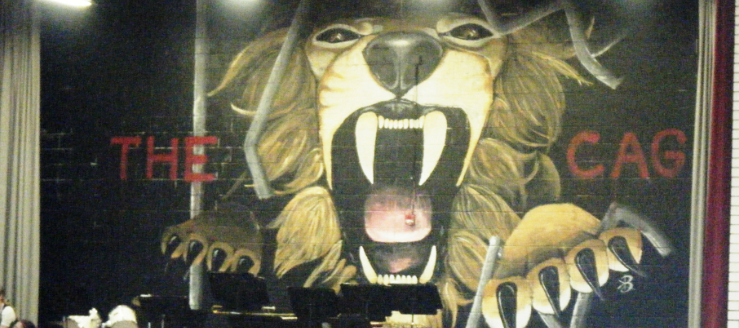 The Cage at Minerva Lions Gymnasium Stage