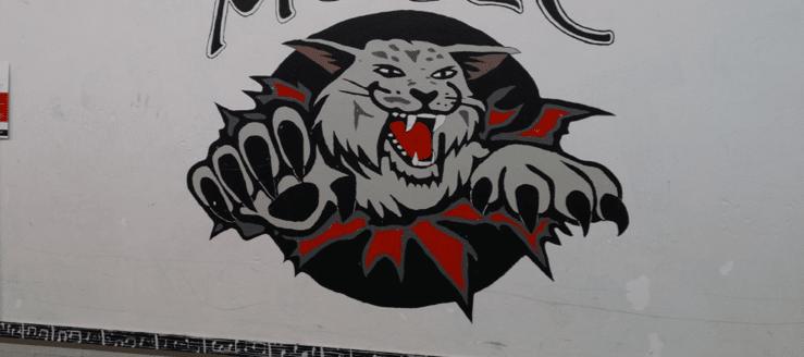 Canton South Wildcats Logo Music