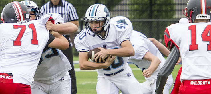 Dylan Walczak 2015 Football Highlights Louisville Leopards
