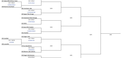 OHSAA Boys Lacrosse Tournament Bracket 2017 - DII, Region 6