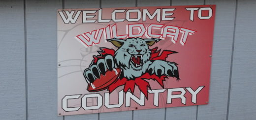 Welcome to Wildcat Country Sign - Canton South Wildcats