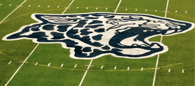 Louisville Leopards Stadium Midfield Leopard Head