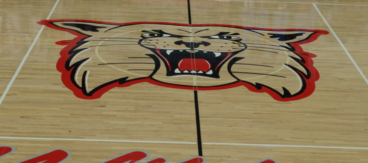 Canton South Wildcats Gym Halfcourt Logo