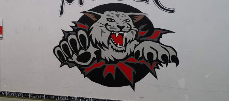 Canton South Wildcats Logo Music