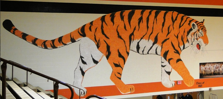 Massillon Tigers Gym Painting Old Tiger Class of 1965