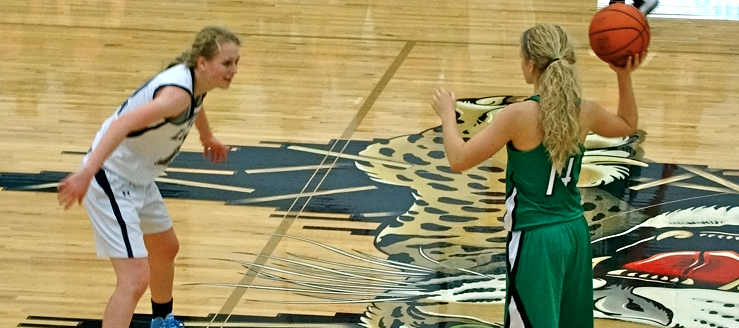Melinda Trimmer West Branch Warriors Basketball Vs. Sarah Lairson Louisville Leopards