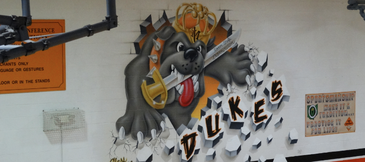 Marlington Dukes Dog Painting in Gym Class of 2008