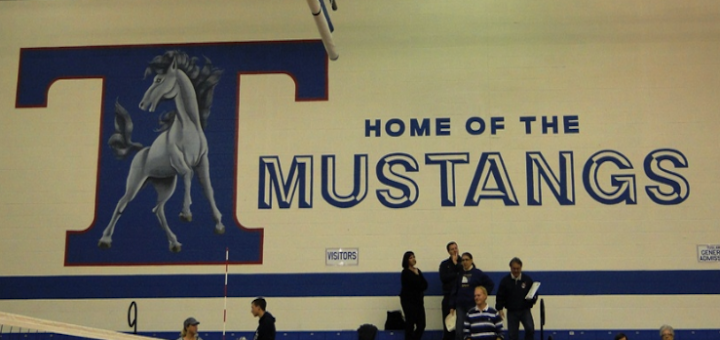 Tuslaw Mustangs High School Gym Logo Painting