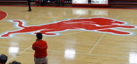 Minerva Lions Gym Center Court Logo