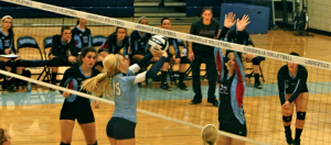 Louisville Leopards at Alliance Aviators 2014 Volleyball Highlights